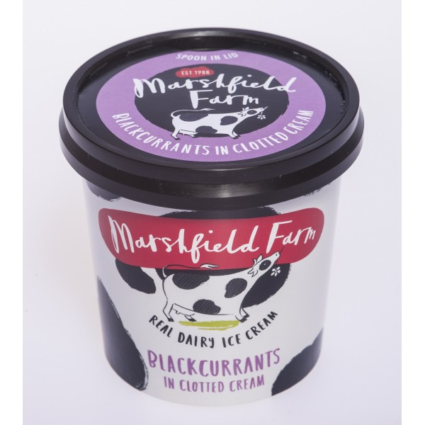 Marshfield Farm Blackcurrants in Clotted Cream-125ml tub