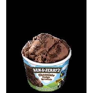 Ben & Jerry's Choc Fudge Brownie 100ml
