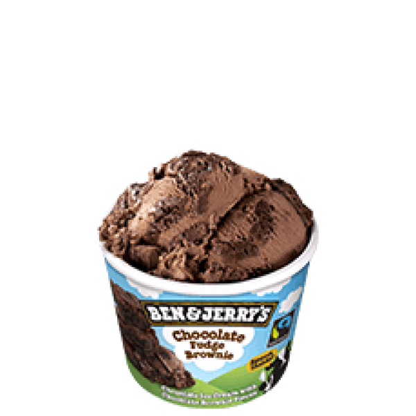 Ben & Jerry's Choc Fudge Brownie 100ml